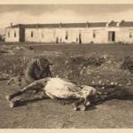 Српски војник скида месо са угинулог коња 1915