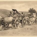 Транспорт рањеника, после битке са Бугарима на Брегалници 1913