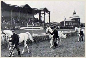 Сл. 13 Тркалиште са гледалиштем, 20.век