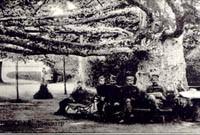 Одмор под Платаном испред Конака кнеза Милоша, 1921.