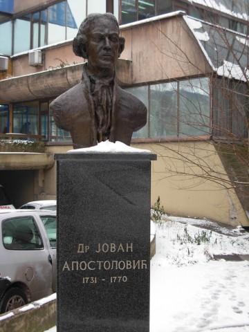 Lik na bisti ispred Pasterovog zavoda u Novom Sadu zamiso je veštog vajara dr Vladimira Jokanovića kako je Jovan u to vreme mogao izgledati
