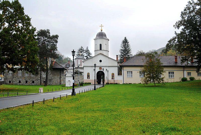 ФОТО: Снежана Неговановић (Извор: Википедија)