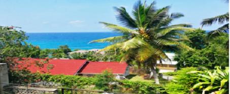 Pogled iz kapele na Indijski okean i palme