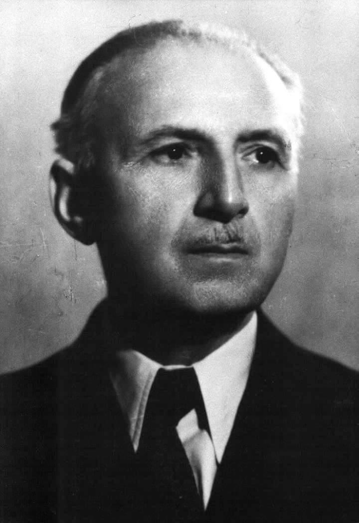 Никола Радојчић