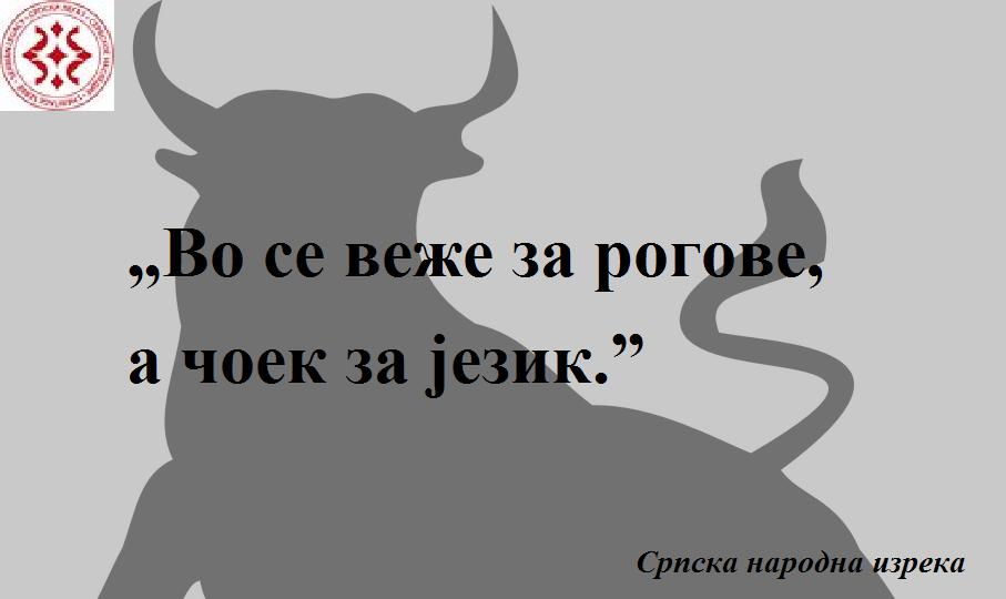 bull-155411_960_720