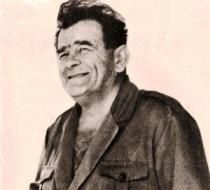 Desimir Žižović Buin