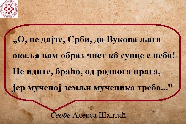 Подлога - Copy - Copy - Copy - Copy - Copy (3)