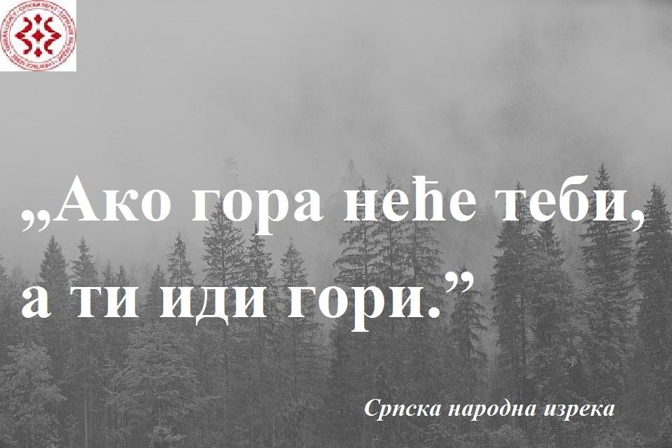 fog-3622519_960_720