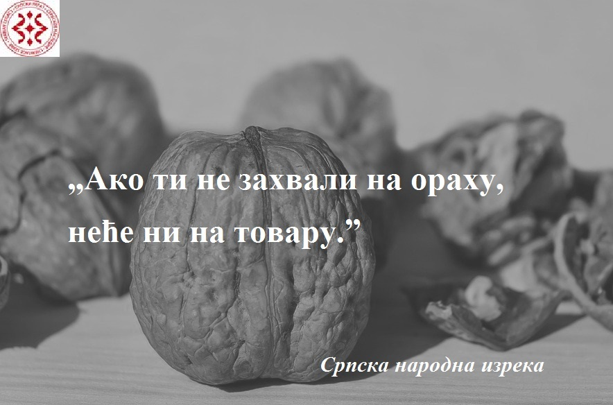 walnut-1739021_960_720