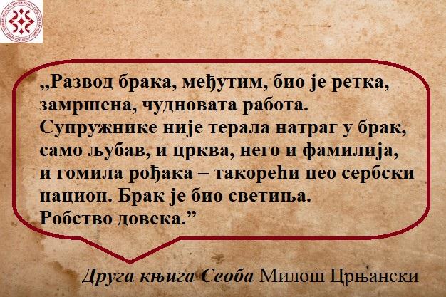 Подлога - Copy - Copy - Copy - Copy (5)