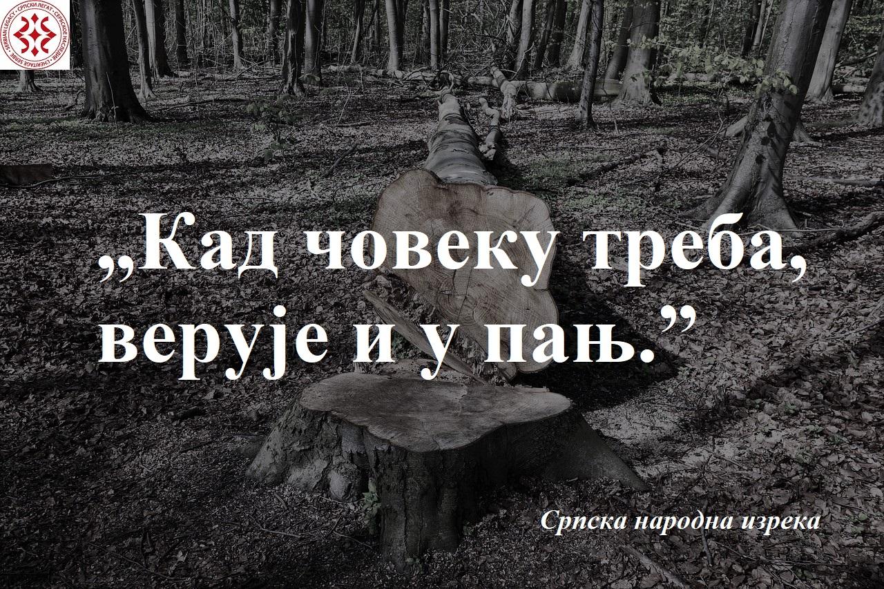 log-3364165_1280