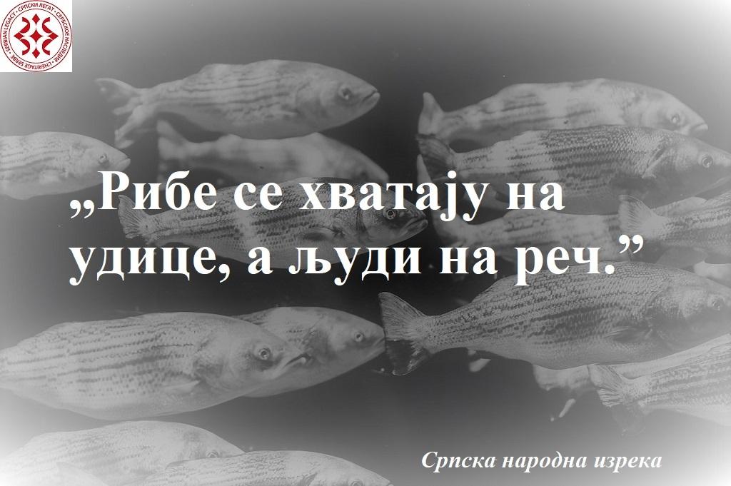 animals-1839706_1280