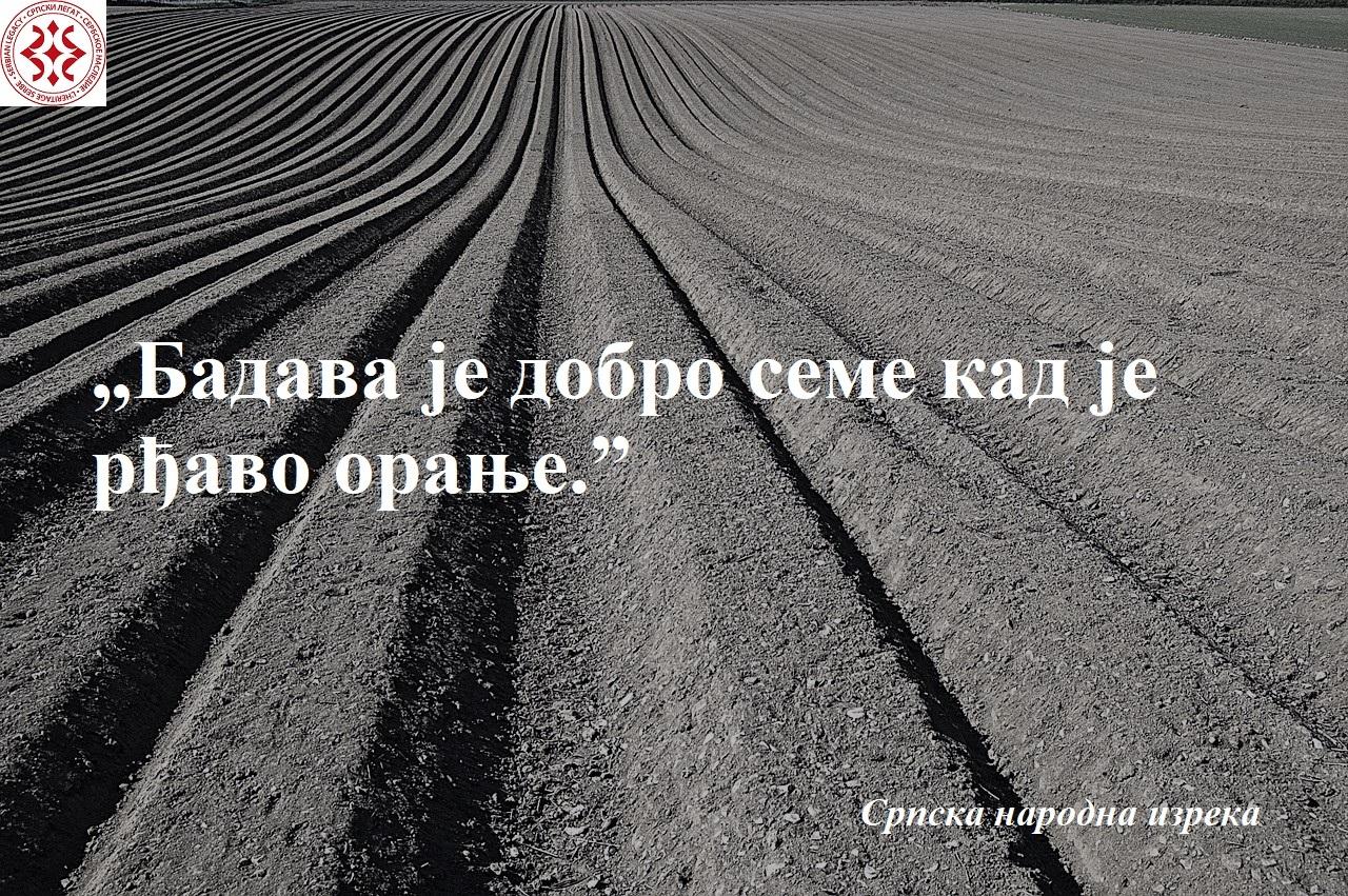 crop-1149914_1280